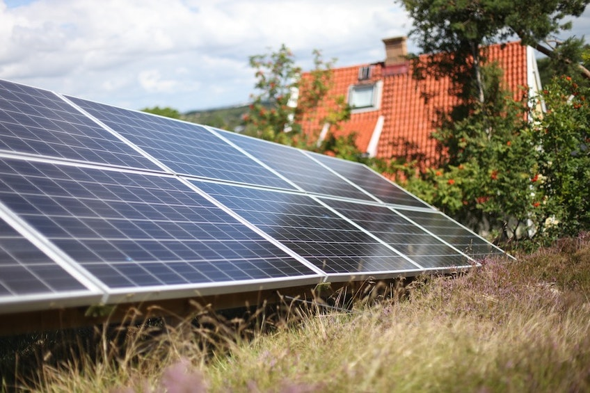 En markmonterad solcellsanläggning med blommande buskar i bakgrunden