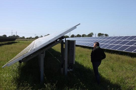 Ola Wilhelmsson, projektledare för solcellsparken Solsidan i Varberg, kontrollerarelproduktionen